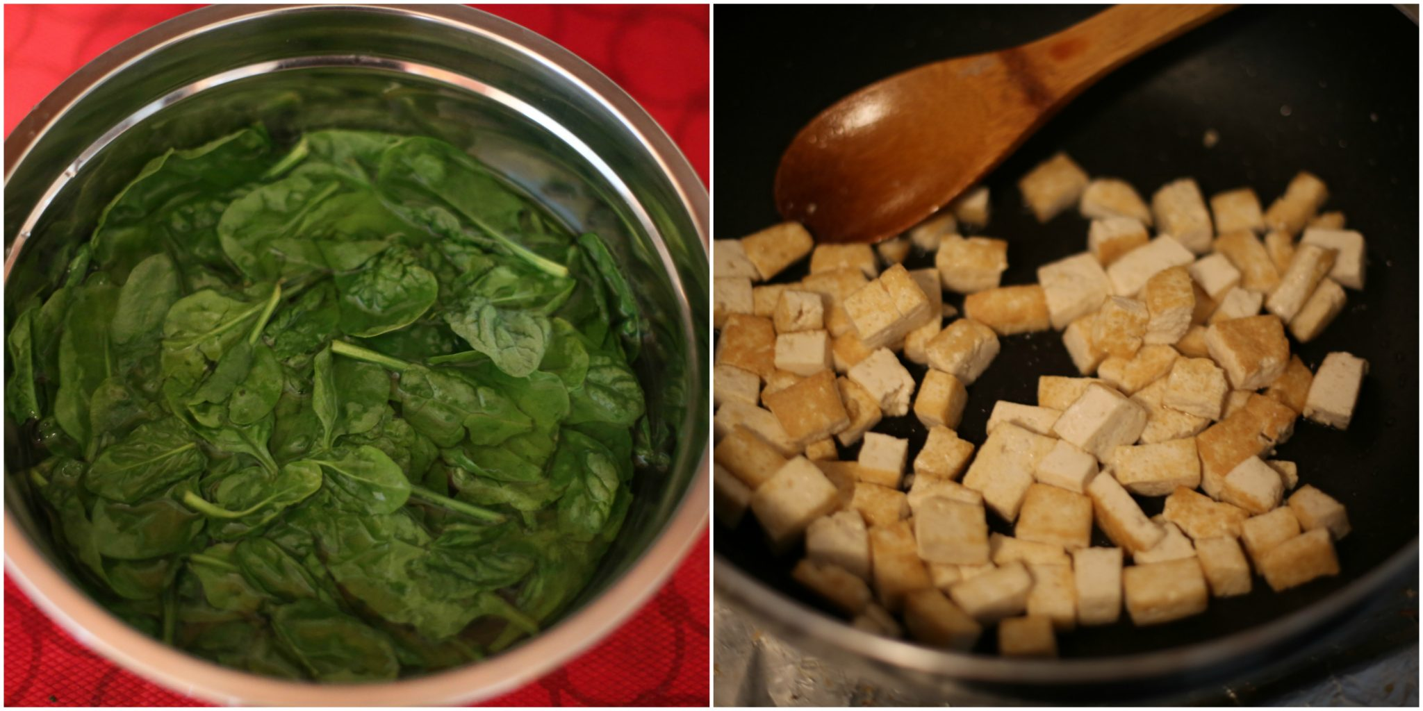 Spinach-tofu-curry-recipe-dl-2